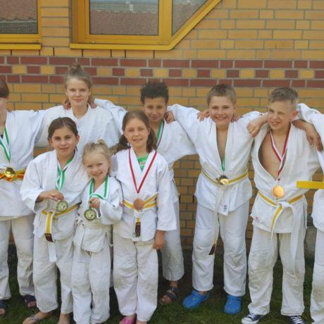 Judo Kreismeisterschaften im OSL- Kreis